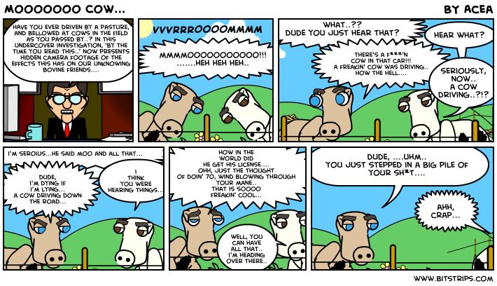 Mooooooo Cow...