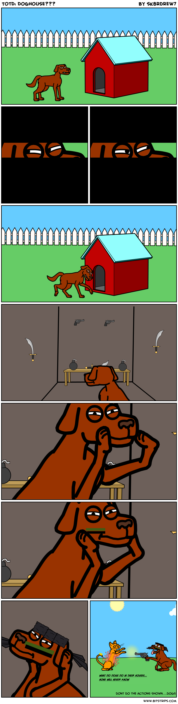 TotD: Doghouse???