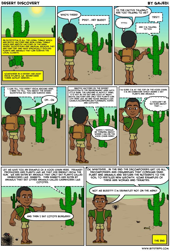 Abiotic Factors  Tropical amp Hot Deserts
