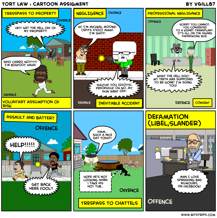 Tort Law : Cartoon Assigment