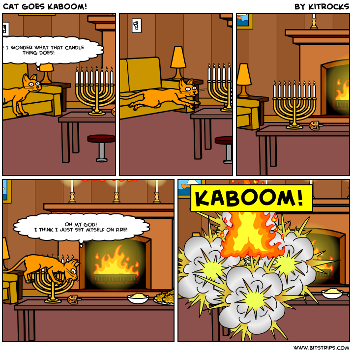 Cat goes Kaboom!