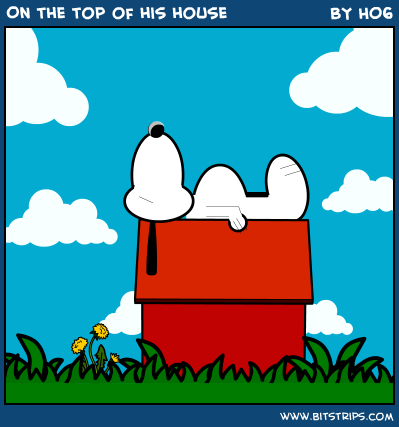 On the top of his house