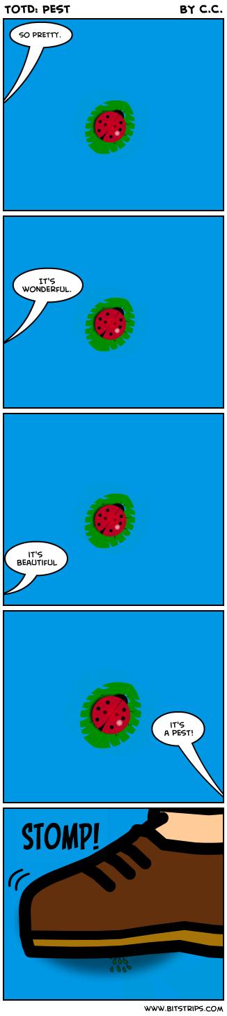 TotD: Pest
