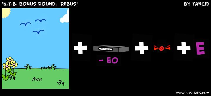 'N.T.B. Bonus Round:  Rebus'