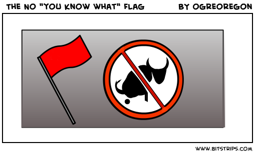 "The No ""you know what"" Flag"