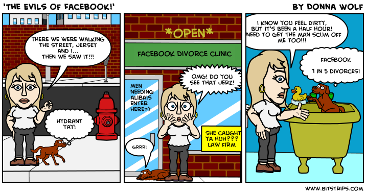 'The Evils of Facebook!'