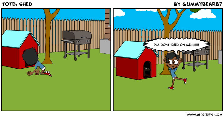 TotD: Shed