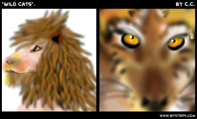 'Wild Cats'.