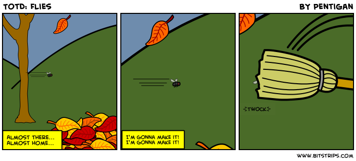 TotD: Flies