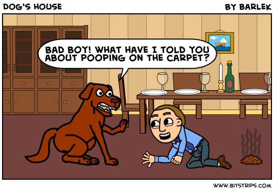 Dog's house