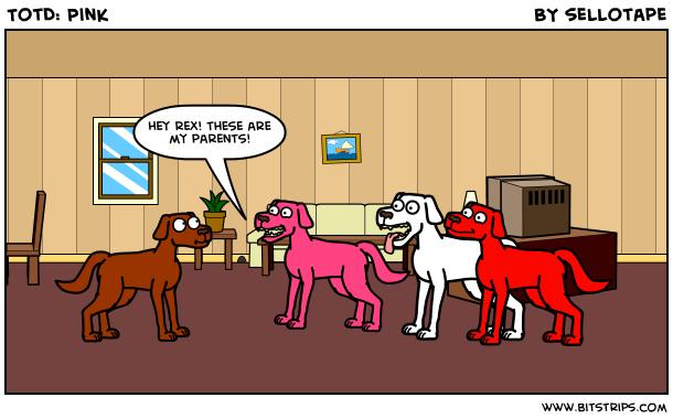 TotD: Pink
