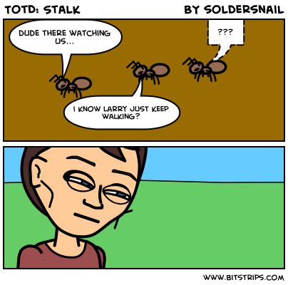 TotD: Stalk