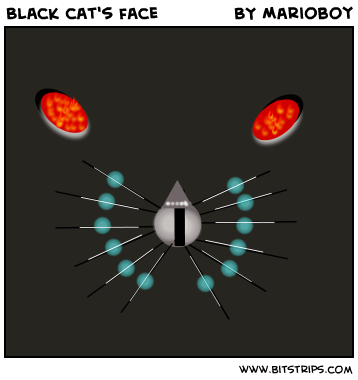 Black cat's face