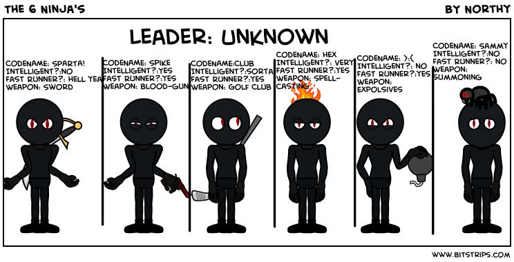 The 6 Ninja's