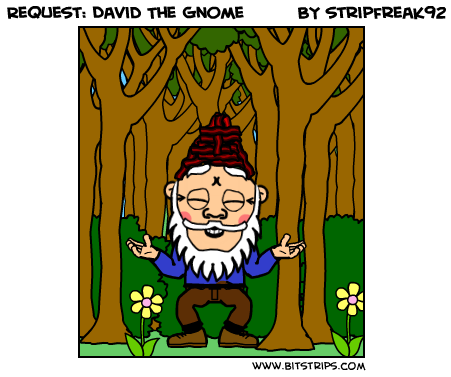 Request: David The Gnome