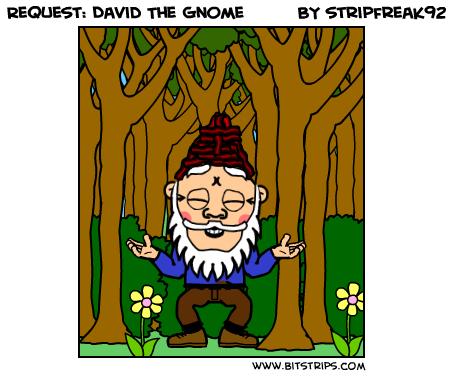 Request: David The Gnome
