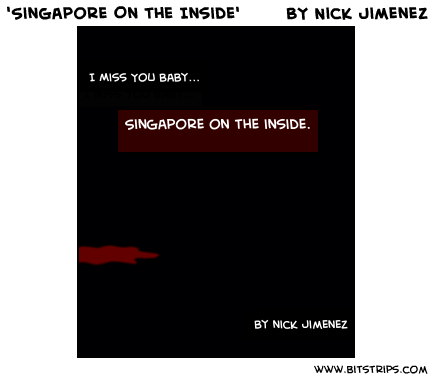 'Singapore On the Inside'