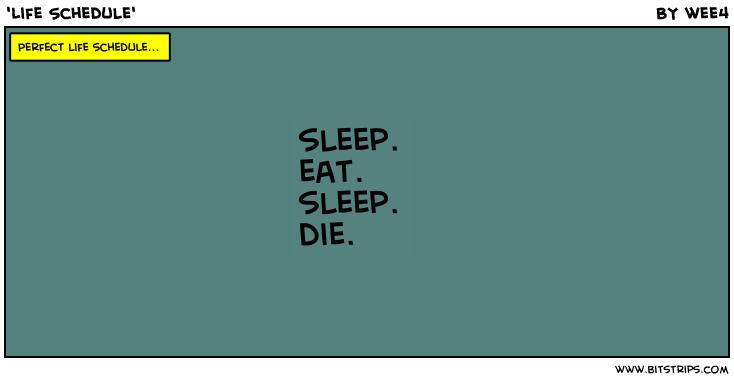 'Life Schedule'