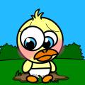 Baby Quack's 'Accident'