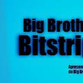 Big Brother Bits 2
