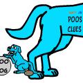 POO'S CLUES
