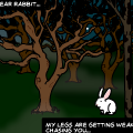 Dear Rabbit...