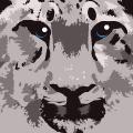 Snow Leopard for Daniel