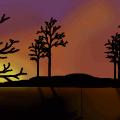 an evening alone