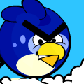 Angry Blue Bird