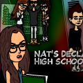 Nat's Declassified High School Guide