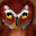 'OWL'