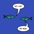 The Underwater World of Bob and Joe
