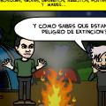 Endangered Mexican Mammals
