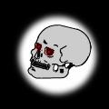 Arnold Schwarzenegger's Skull