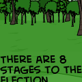 'The Election Process'