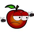 TotD: Rot