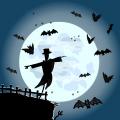 TotD: Full moon