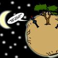 'A Tree'