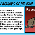 TotD: Nocturnal