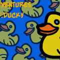 The Adventures Of Mr.Ducky