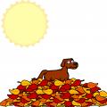 TotD: Autumn