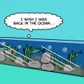 TotD: Ocean 1