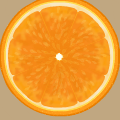 Citrus and a Kiwi