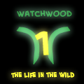 Watchwood Chapter 1