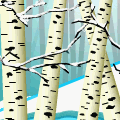 TotD: Birch Forest